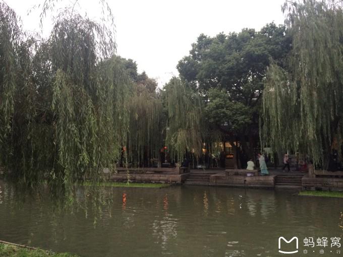 2015旅程总结#青岛/朱家角/三清山/济州岛/惠州/西塘