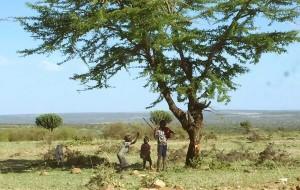 【内罗毕图片】两个女人独闯非洲·肯尼亚7天6夜!