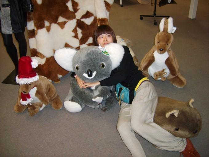 在澳大利亚拥抱可爱的树袋熊,我们的第一次出国旅行.