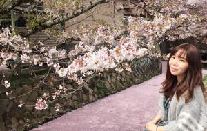 【白滨町图片】【6月28日 更新啦】OK,let's go!(白滨-京都-奈良-大阪)我不想写千篇一律的游记~