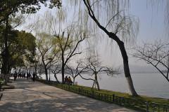 我在江南的正月里等待春天