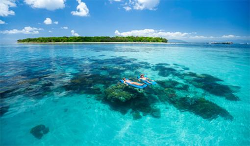 发现远古热带雨林 绿岛大堡礁两日游
