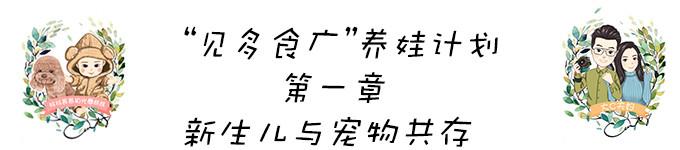 """""""见多食广""""养娃计划——新生儿与宠物共存"""