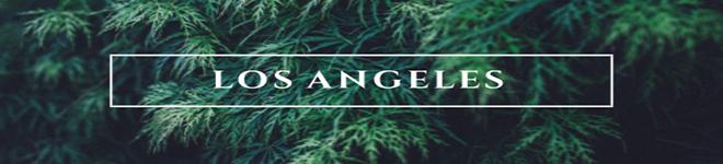 ➕➕➕ Los Angeles ➕➕➕