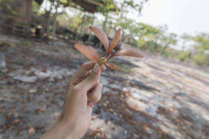 非著名景點打卡偏執狂的自我救贖 — 泰國伊森地區行記 119