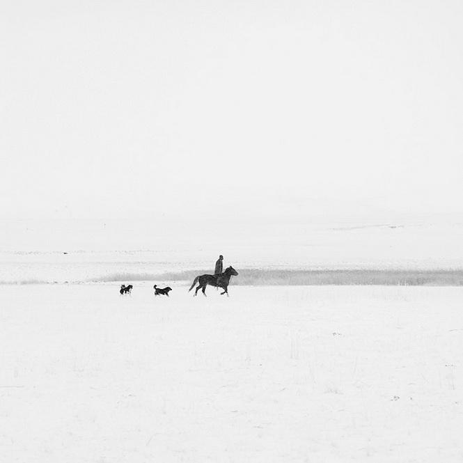 寂靜的遠方:冬雪阿爾山