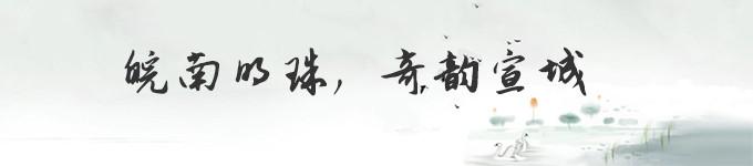 皖南明珠,奇韵宣城