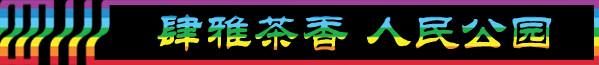 DAY6-1:肆雅茶香 人民公园